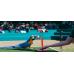 Bird Show At Dubai Creek Park