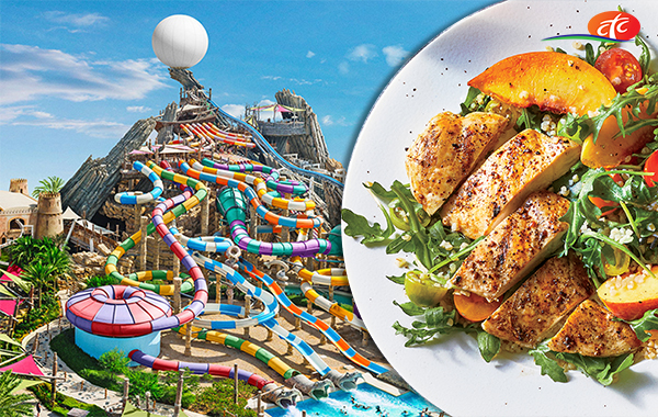 Yas Water World With Meal | Abu Dhabi