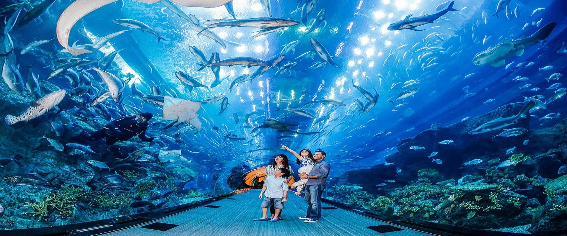 Burj Khalifa + Dubai Aquarium