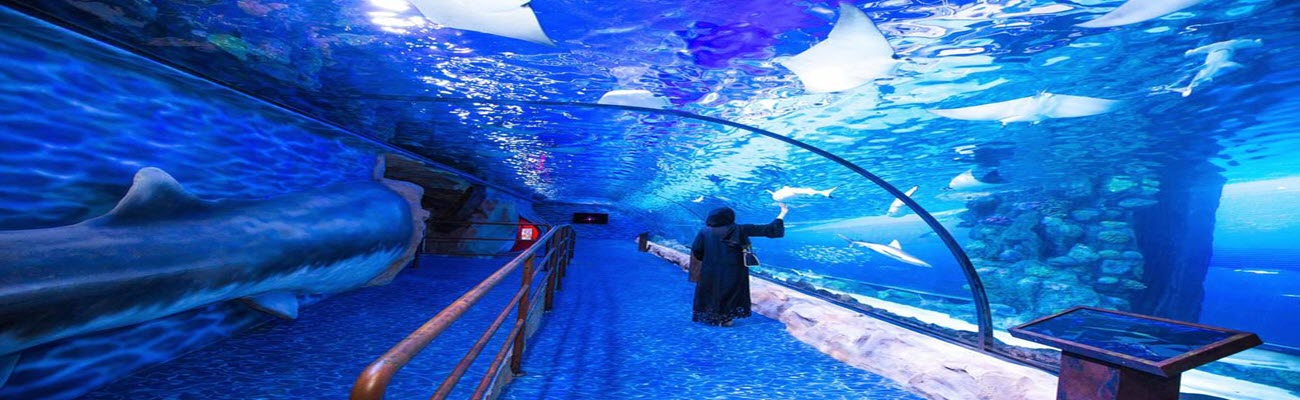 Dubai Aquarium And Underwater Zoo (DAUZ)