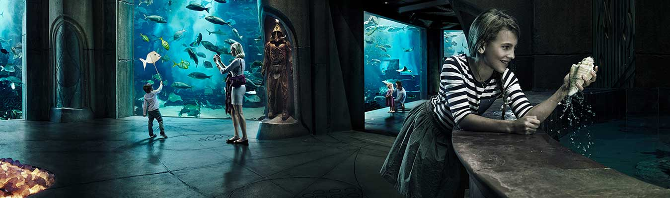 Aquaventure and Lost Chambers Atlantis The Palm
