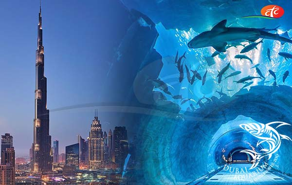 Burj Khalifa and Dubai Aquarium & Underwater Zoo