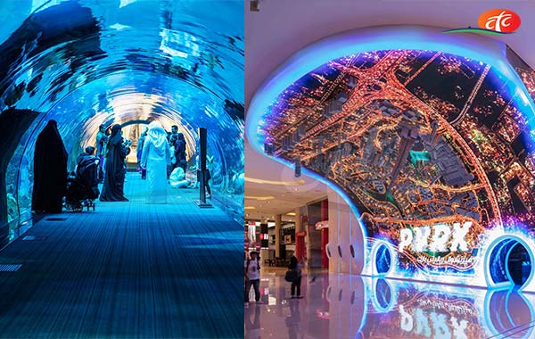 Dubai Aquarium & Underwater Zoo and VR Park