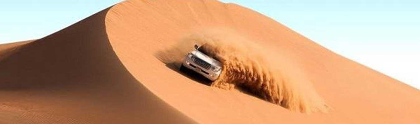 Desert Safari - Premium
