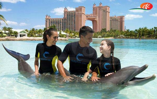 Dolphin Bay - Atlantis The Palm