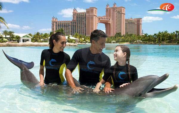 Dolphin Bay - Atlantis The Palm