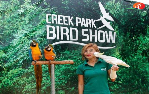 Exotic Bird Show - Dubai Creek Park